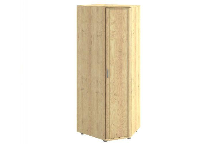 Купить Шкаф угловой Эстетика 240.01 в интернет магазине корпусной и мягкой мебели для дома
