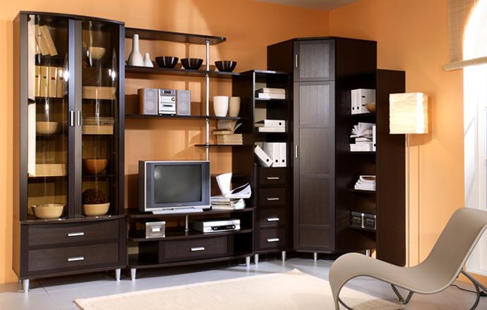 Купить Гостиная Фристайл 2 в интернет магазине корпусной и мягкой мебели для дома