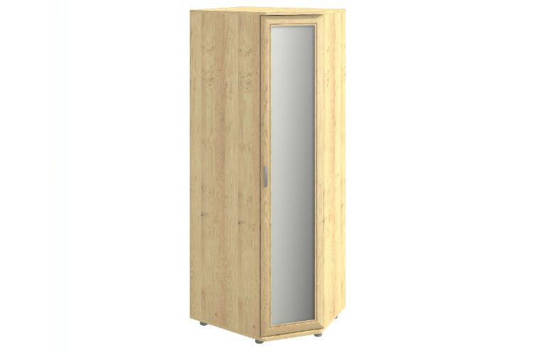Купить Шкаф угловой Эстетика 240.02 в интернет магазине корпусной и мягкой мебели для дома